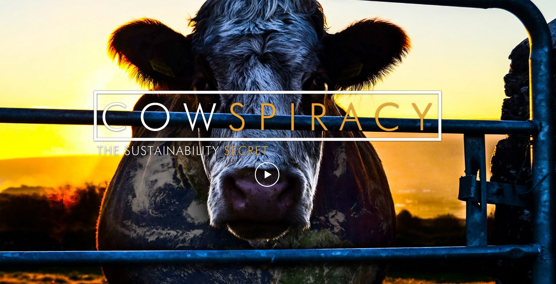50 best documentaries on netflix cowspiracy mooves into